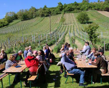 Leute sitzen im Weingarten auf Bänken