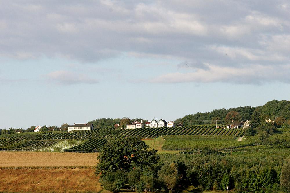 Deutsch Schützen Weingärten
