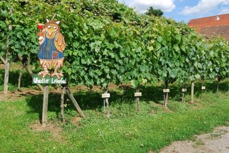 Weingarten Eltendorf