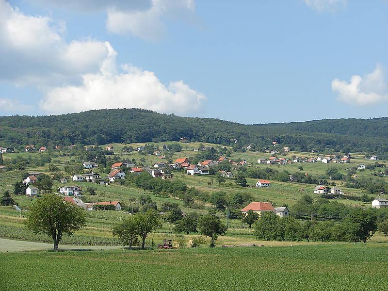 Das Weinbaugebiet in Rechnitz