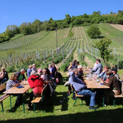 Leute sitzen bei Sonnenschein im Weingarten