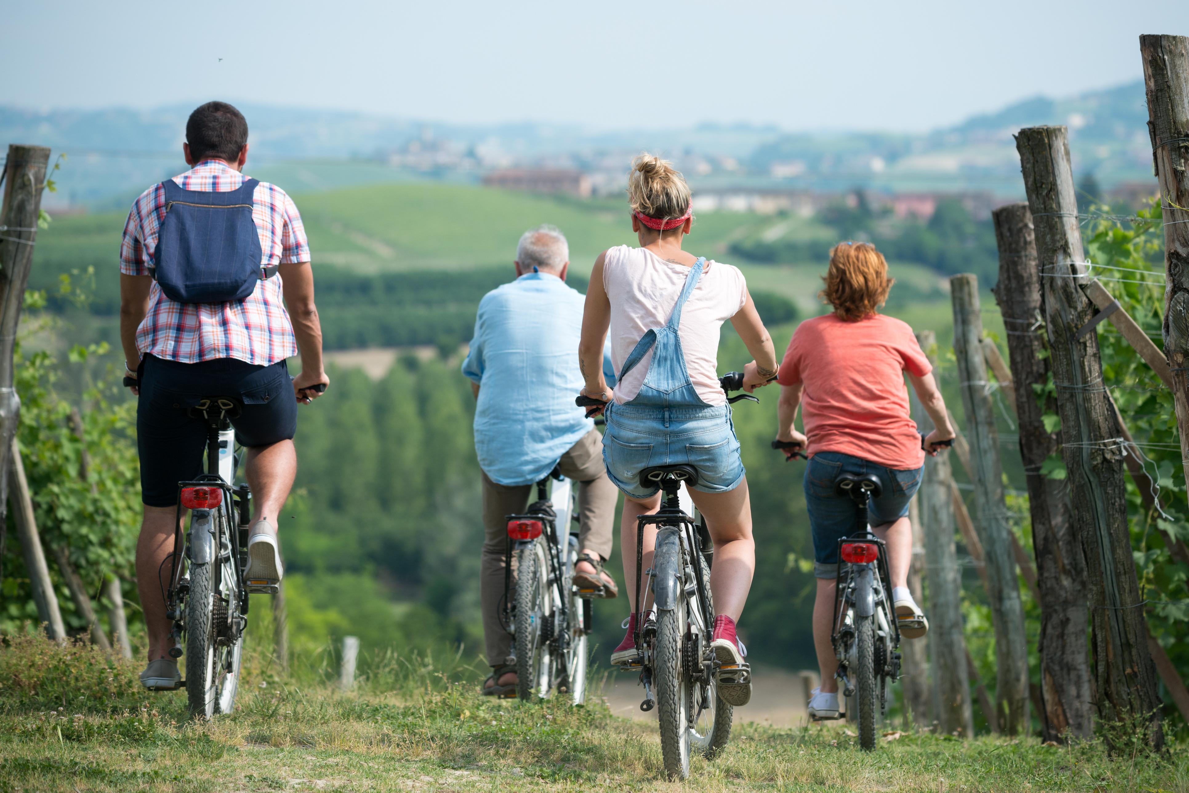 Radfahren zwischen den Weingärten